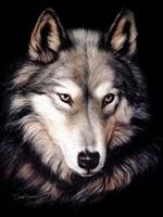 avatar de Lewan