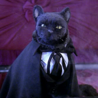 avatar de Jotunheim