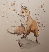 avatar de Skoui