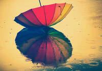 avatar de Lilou1234