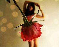 avatar de lili-cool