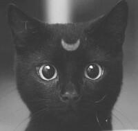 avatar de Camille45