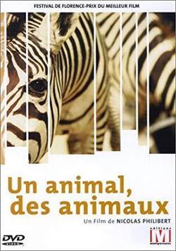 Couverture de Un animal, des animaux