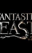 Les Animaux fantastiques - 3e partie -