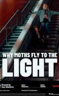 Why moths fly to the light ?