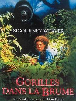 Couverture de Gorilles dans la brume