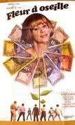 Fleur d'oseille
