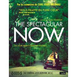 Couverture de The Spectacular Now